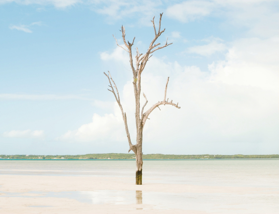 Harbour Island Image
